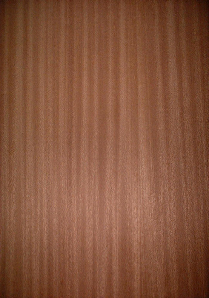 Sapele crown cut