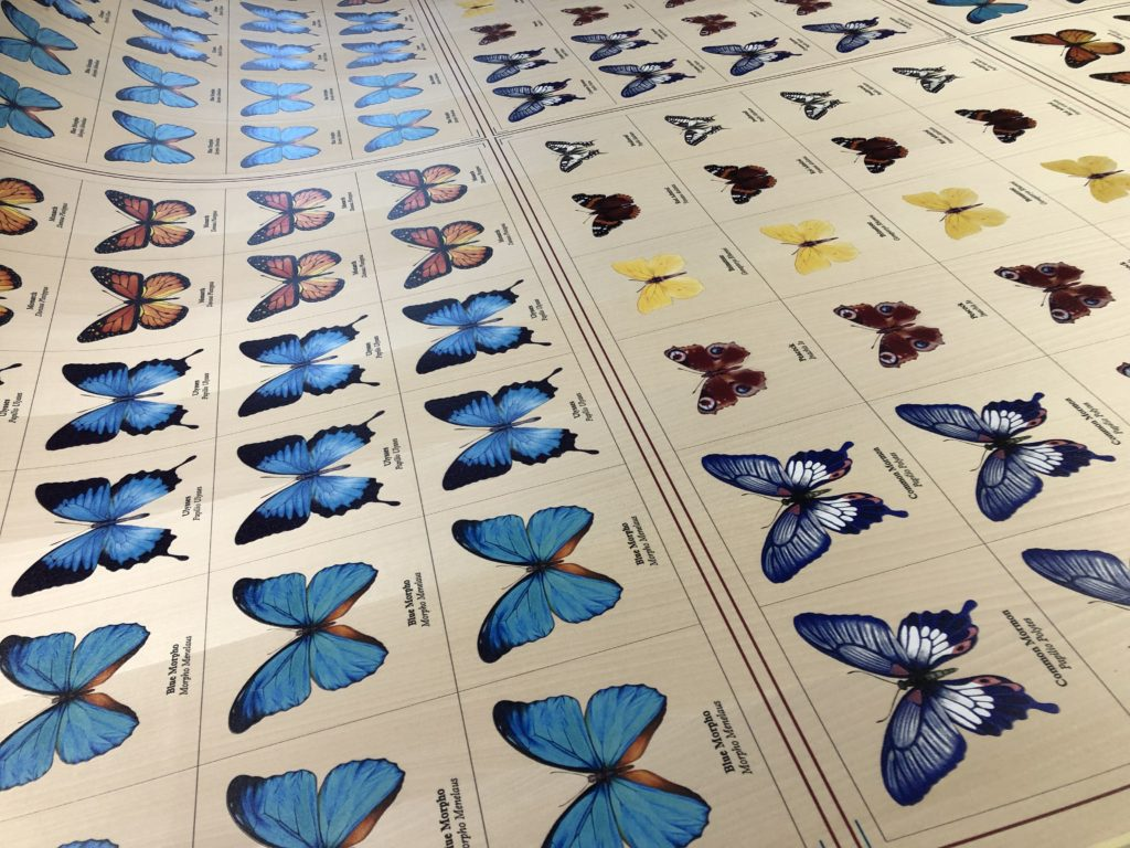 Butterflies printed on wood veneer