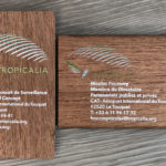 Printed sapele veneer wooden business cards